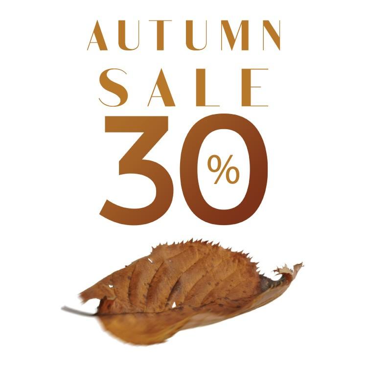 Φθινοπωρινές εκπτώσεις 30% φύλλο