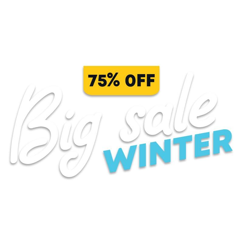 Big Sale Winter