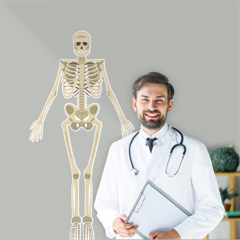 Αυτοκόλλητο Τοίχου - Σκελετός